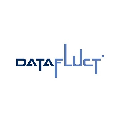 datafluct-out_1-(1)